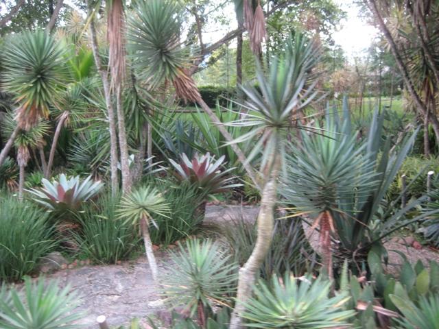 taman bunga mediterania
